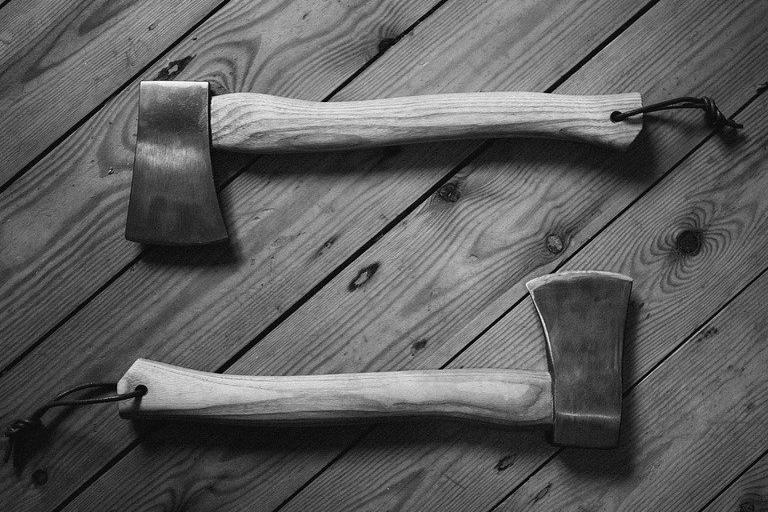 Extension ossature bois à Annecy-le-vieux 74940 : Devis et tarifs