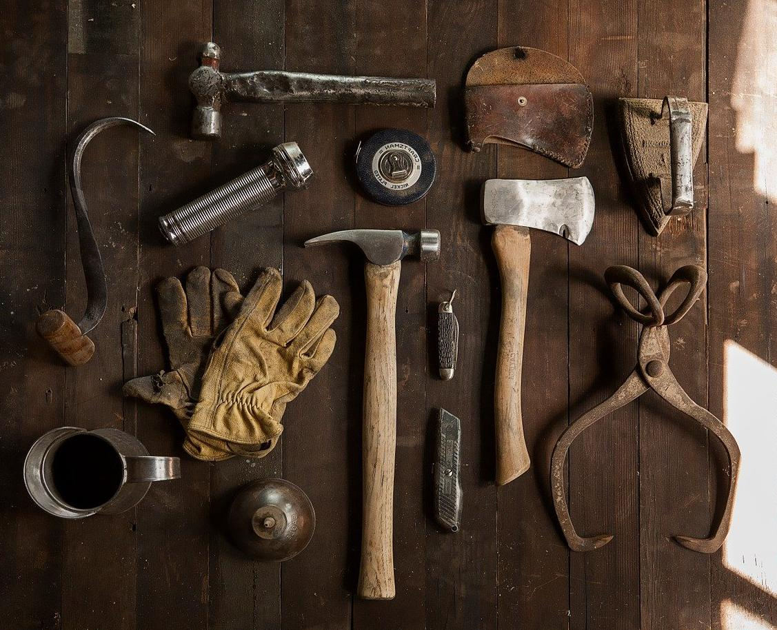 Quel bois choisir pour votre extension en ossature bois ?
